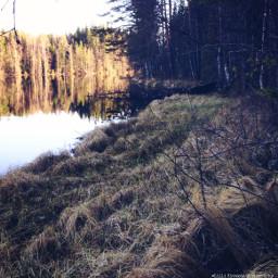 landscapes landscape nature dailyinspiration naturephotography freetoedit