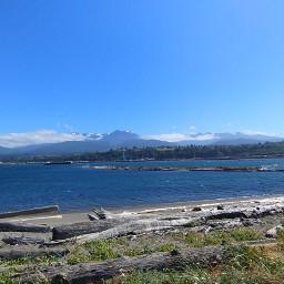 ocean logs rockybeach mountainview freetoedit