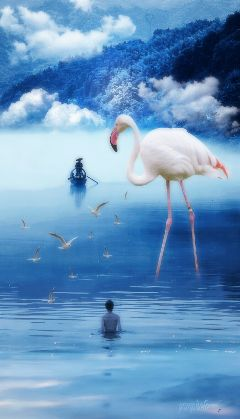 nature lake stork surreal surrealist freetoedit