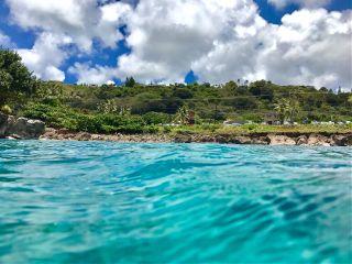 sharkscove northshore hawaii oahu ocean freetoedit