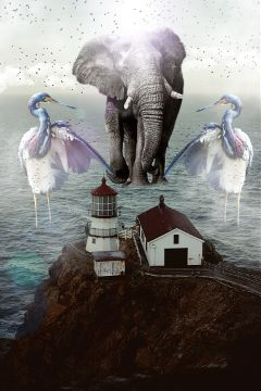 freetoedit ocean sky water cranes