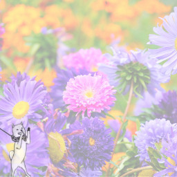 freetoedit flowers pastel anime cute