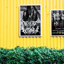 freetoedit myband poster show cool