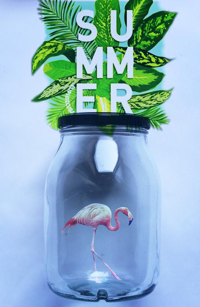 #freetoedit #summer #flamingo #interesting