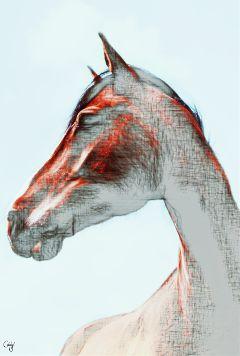 freetoedit horse pencilart