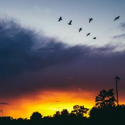wilmingtonnc northcarolina nature naturephotography sunset