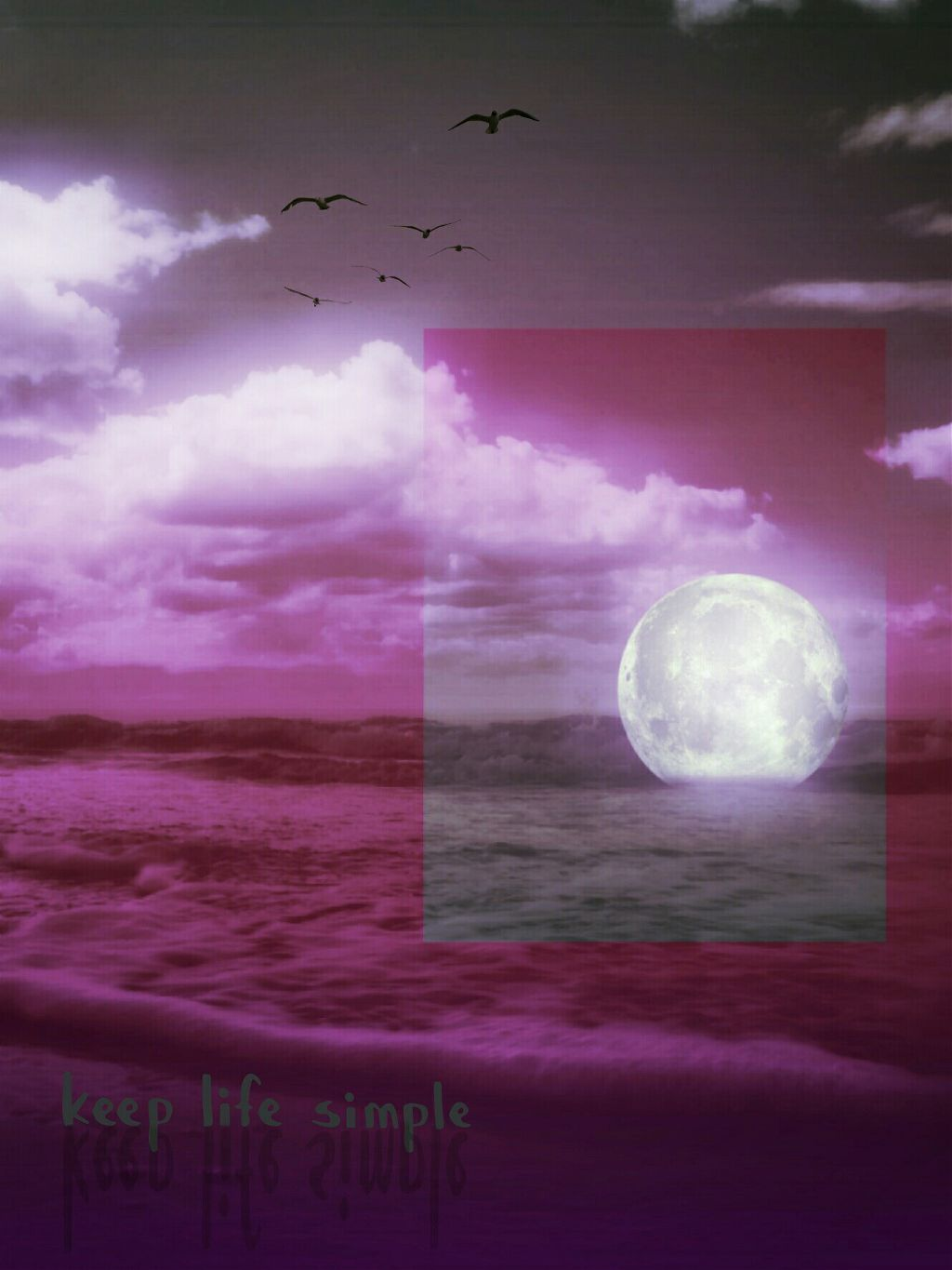Nice evening PA Image from @portraitsbynette    #madewithpicsart #quotesandsayings #pink #nature #moon #photomanipulation #beach #edited #editstepbystep #myedit #gradienteffect #stickers #mask #colorful
