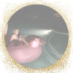 pool pink summer flamingo water freetoedit