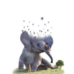 freetoedit elephant girl abstract visual