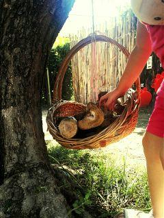 freetoedit tree childhood mywork myworld