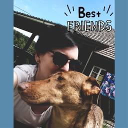 dailystickerremix friendshipday bestfriends petlove dogs freetoedit