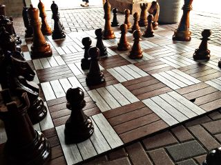 leo037 pictureart game chess louisiana freetoedit