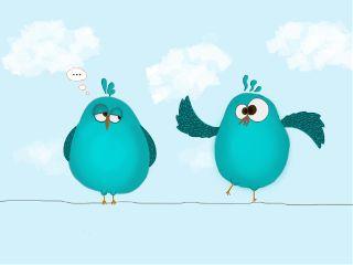 color birds cyan illustration freetoedit
