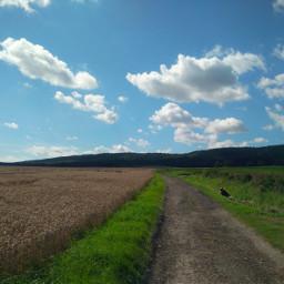 freetoedit nikond5300 unedited photography landscape