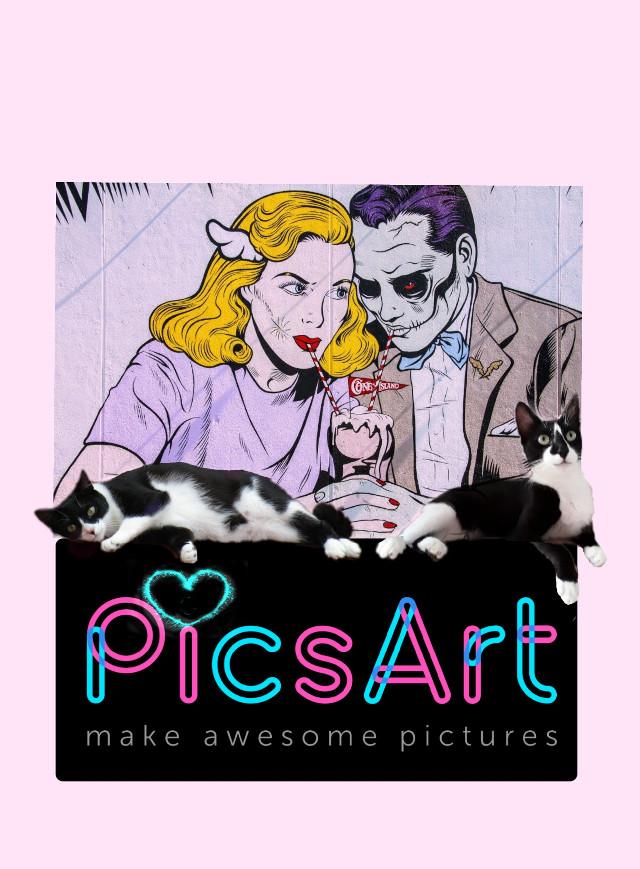 Sansa &Chica #myedit #creative #artistic #mypet #cute #catsofpicsart