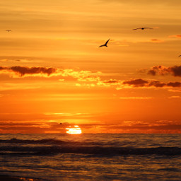 noedit sunrise orange color ocean
