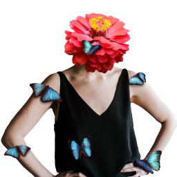 freetoedit flower red butterfly human