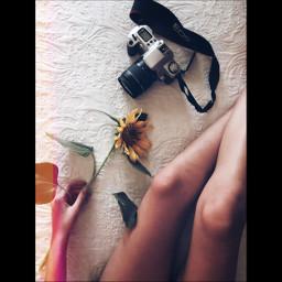 photographer photoshop phototumblr freetoedit