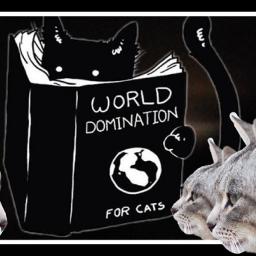 catstickers remixed remixit dailystickerremix freetoedit