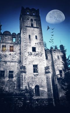 freetoedit remim castle history architecture