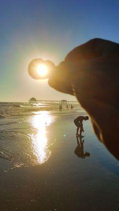 beach sunset shell reflection pier