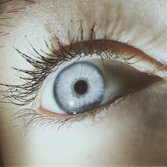 freetoedit remixit eye blueeyes eyelashes