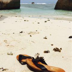 beach vacation paradise varm snorkling