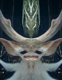 mirrored photography darkart strange myart