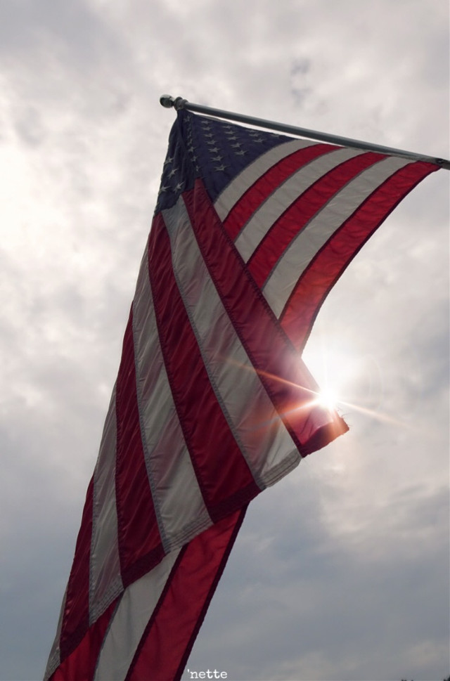 To survive in peace and harmony, united and strong, we must have one people, one nation, one flag.  Pauline Hanson #freetoedit #flag #usaflag #againstthesky #sunflare #myoriginalphoto