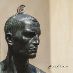 freetoedit bird statue head ontop