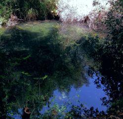 freetoedit river reflection picsarteffects picsart