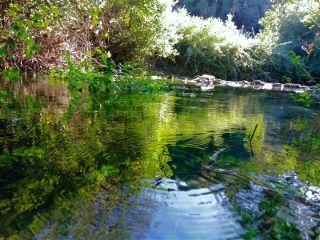 freetoedit river nature picsart picsarteffect