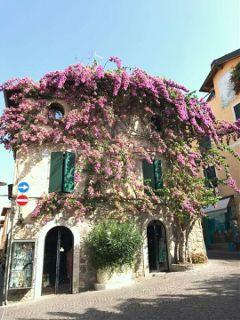 freetoedit travel italia