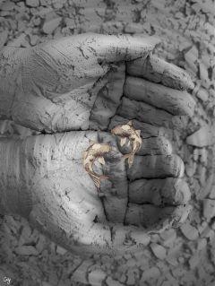 freetoedit hands water mud fish