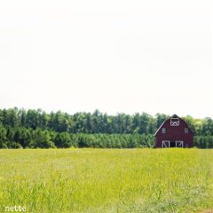 freetoedit barn farmland rural myoriginalphoto