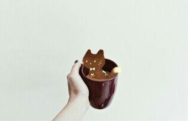 freetoedit coffee cat