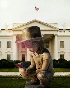 freetoedit statue whitehouse edit remix