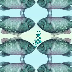 freetoedit mirroreffect fishies blue vintage