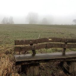 freetoedit dpcbenches fog landscape nikond5300