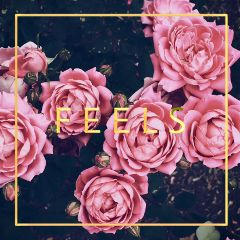 freetoedit pink remixed flowers gold