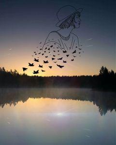 freetoedit silhouette dreamy woman birdflock