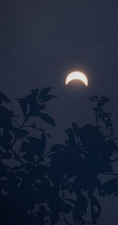 solareclipse boston