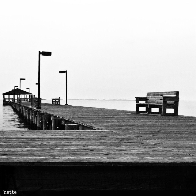 """#dpcbenches #dock #chesapeakebay #freetoedit #blackandwhite #myoriginalphoto thank you @pa for the feature in """"most liked"""""""