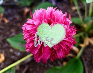 freetoedit flowerpower loveflower emotions nature