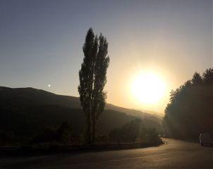 sunset freetoedit