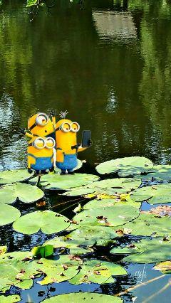 freetoedit @csefi minions waterplants nature