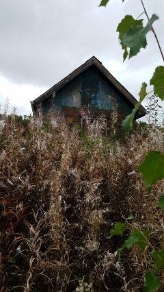 freetoedit haunted place weeds