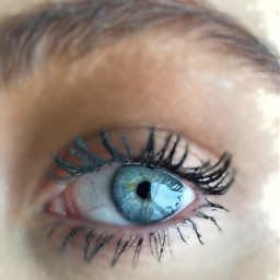 eye blue blueeyes eyes iris freetoedit