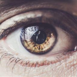 eye eyes vision visionary reflection camera photography photographer seeing iris human body portrait