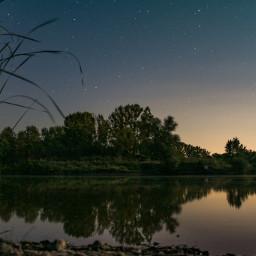 nature night lake trees mirror